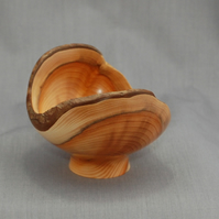 Graceful Yew Bowl