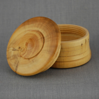 Pill Box in English Boxwood