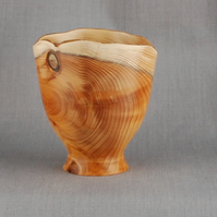 Attractive Yew Vessel