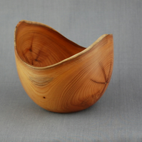Double Dip Bowl in Yew