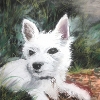 Original Pastel, Painting, West Highland Terrier,