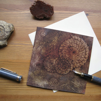Ammonites III greetings card