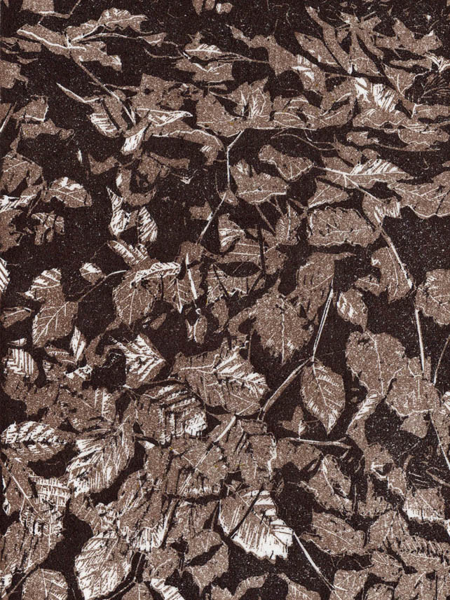 Bronze Beech - hand burnished woodcut print limited edition