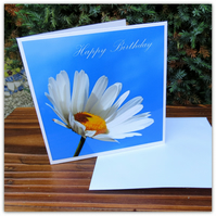 Daisy, daisy. A happy birthday card featuing an original photograph.