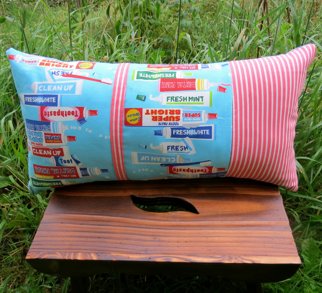 SALE!  A quirky toothpaste themed cushion complete with cushion pad.