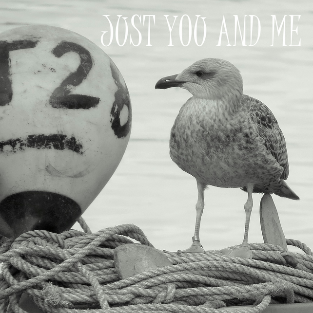 ''Just you and me.''  A card featuring an original photograph.