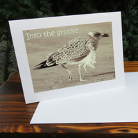 ''Into the groove.''  A blank card featuring an original photograph.