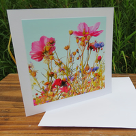 Wild flower meadow.  A card feauring an original photograph.  Blank inside.