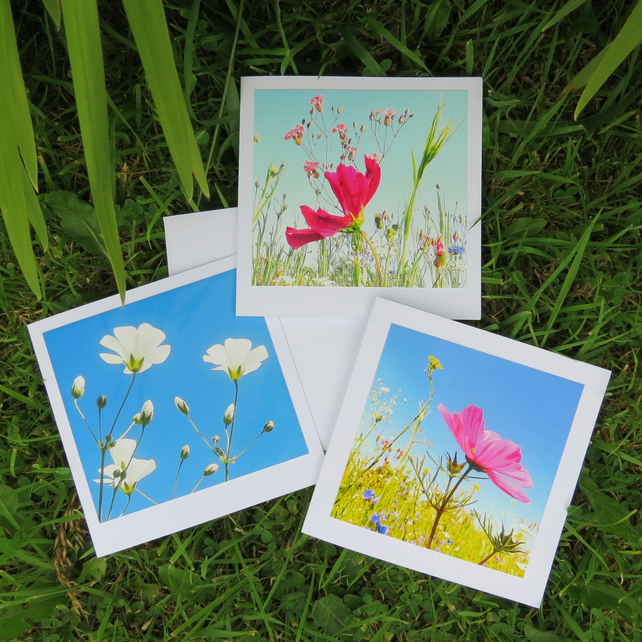 Wish upon a flower. A set of three cards, each featuring an original photograph.