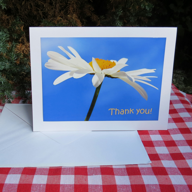 Thank you!  A card left blank for your own message.  Flower card.