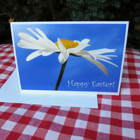 Easter card.  A card featuring an original photograph.  Blank inside.