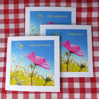 Set of three cards.  Happy Birthday,  Thank You,  Get Well Soon.  Notelets.