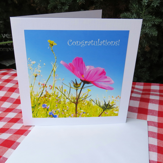 Congratulations!  A card featuring an original photograph.  Blank inside.
