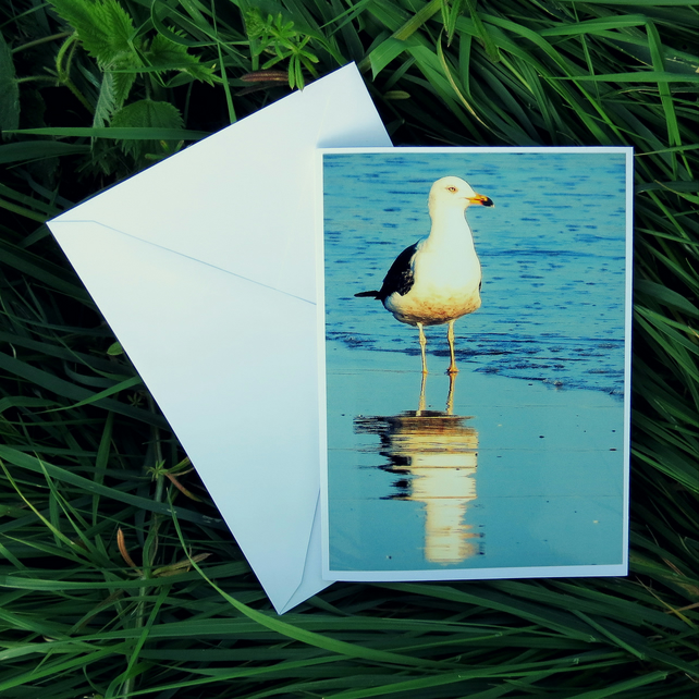 A card featuring an original photograph.  Low tide.  Blank inside.