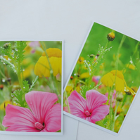 Set of Cards. Set of two cards, each featuring an original photograph. Notelets