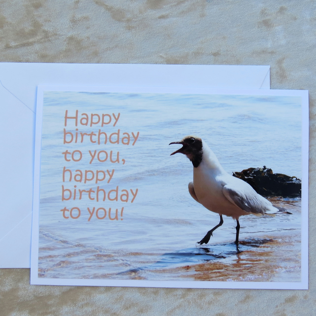 Happy Birthday.  A card featuring an original photograph.  Birthday card.