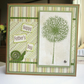 Father's Day Card Dandelion - Green