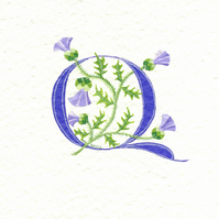 Initial letter 'Q' handpainted in purple with Scots thistles.