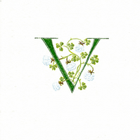 Initial letter 'V' handpainted in green with lucky white clover.
