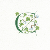 Initial letter 'C' in green with lucky white clover .