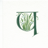 Letter Y' handpainted in dark green with snowdrops