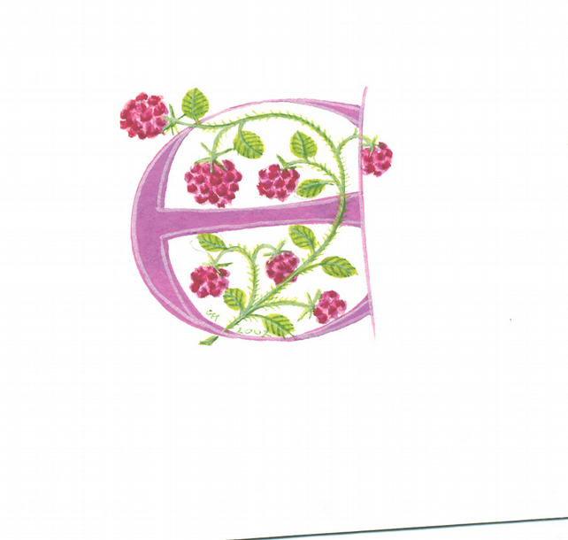 Custom initial letter 'E' in pink with raspberries.