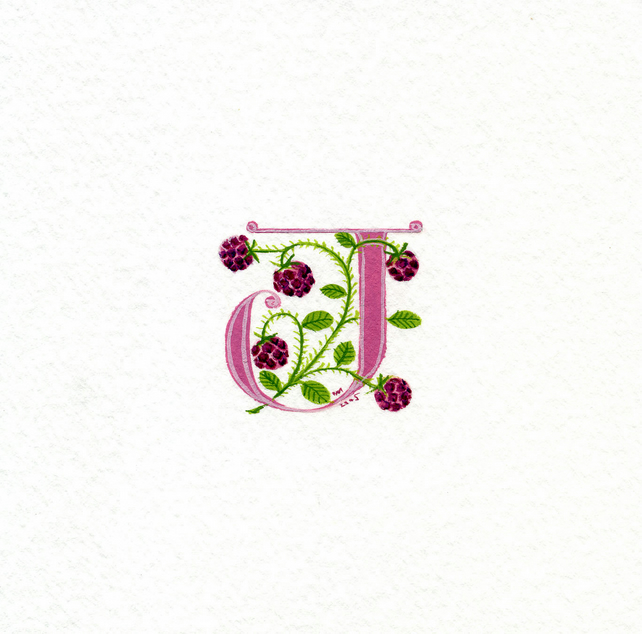 Initial letter in pink with raspberries birthday gift custom initial letters.