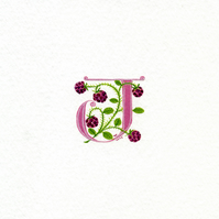 Initial letter J in pink with raspberries birthday gift custom initial letters.