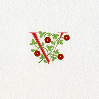 Initial letter 'V' in red with heraldic roses custom initials handmade
