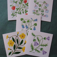 Flower cards Thistle Strawberry Primrose Clover Bluebell cards