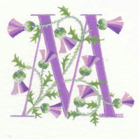Initial letter M in pale purple with Scots thistles.