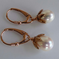 Freshwater Pearl rose gold  vermeil lever back earrings