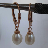 Freshwater pearl earrings Rose Gold Vermeil lever back