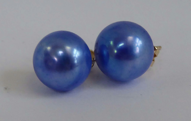 Freshwater pearl 9ct gold post & scroll stud earrings electric blue AAA