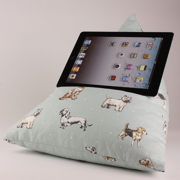 Best of Show - Tablet - iPad - e-reader - Book - Beanbag - Cushion - Pillow