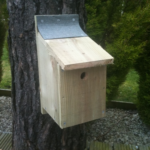 Make Your Own Bird Box Kit Folksy