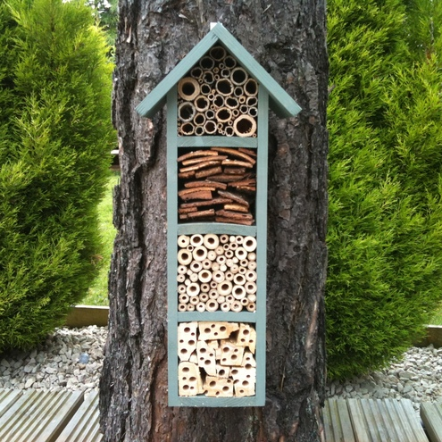 The Tallest Bee Hotel