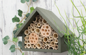 Other Bee Hotels