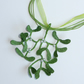 Large mistletoe pendant with free ribbon and cord necklace