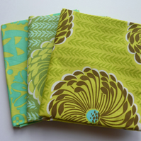Amy Butler 3 fat quarter bundle