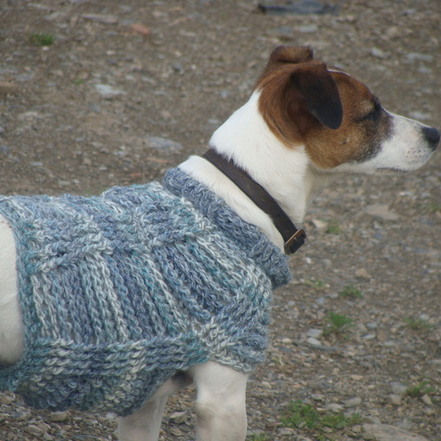 Free Knitting Patterns For Miniature Dogs : KNITTING PATTERNS DOG JUMPERS SMALL DOGS   KNITTING PATTERN