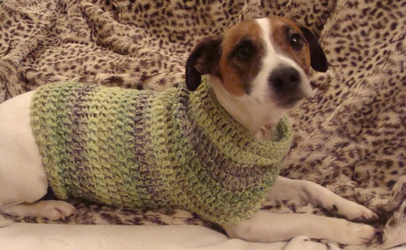 Crochet Pattern for Small Dog Jumper