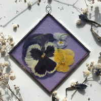 Violet Pansy and Viola frame