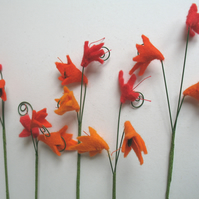Beautiful botanical flowers in shades of orange