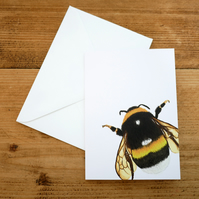 Illustrated Bumblebee Card