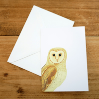 Illustrated Barn Owl Card