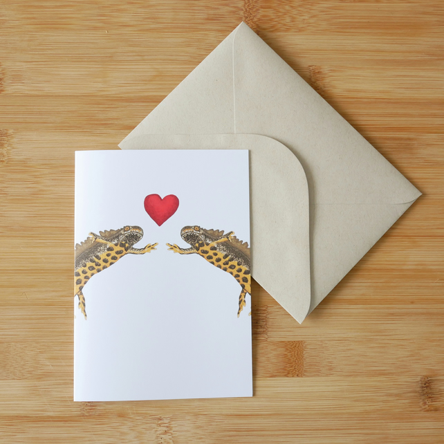 Valentine's Day Great Crested Newt Card