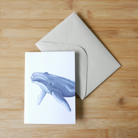 Illustrated Whale Card