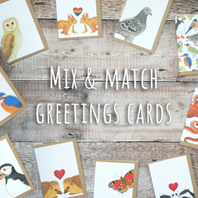 Mix & Match Greetings Card Set - Eco Friendly, 100% Recycled Blank