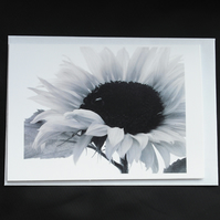 A6 Sunflower Greeting Card